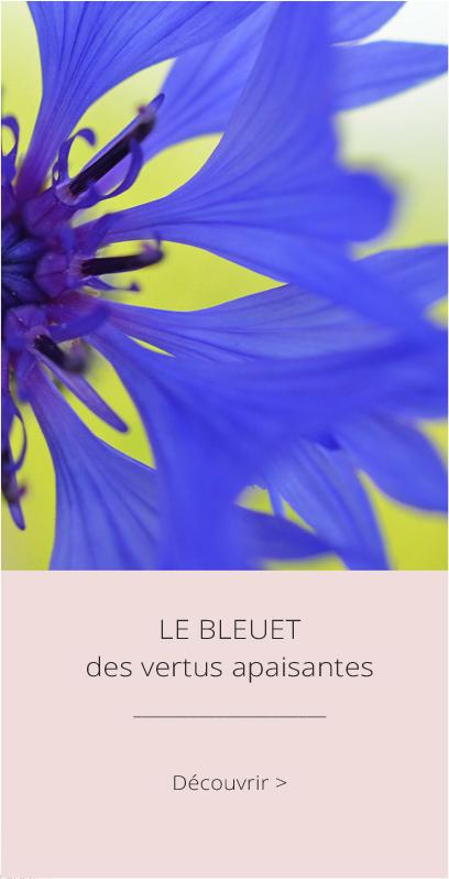 Le Bleuet, des vertus apaisantes